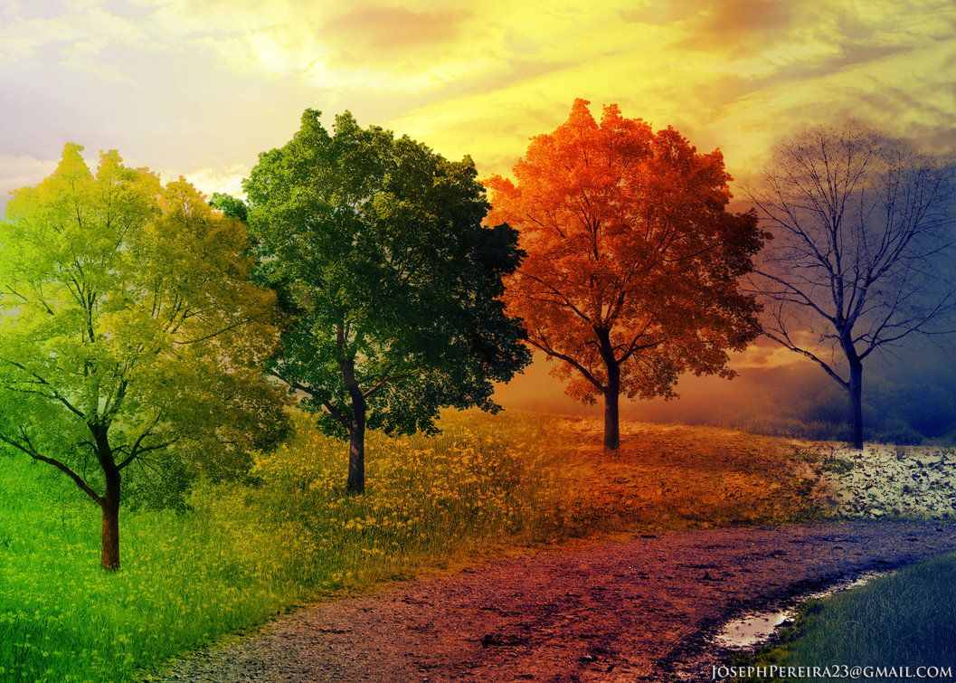 Land Of All Seasons By Joseph Pereira On Deviantart Four Seasons Art Seasons Art Four Seasons