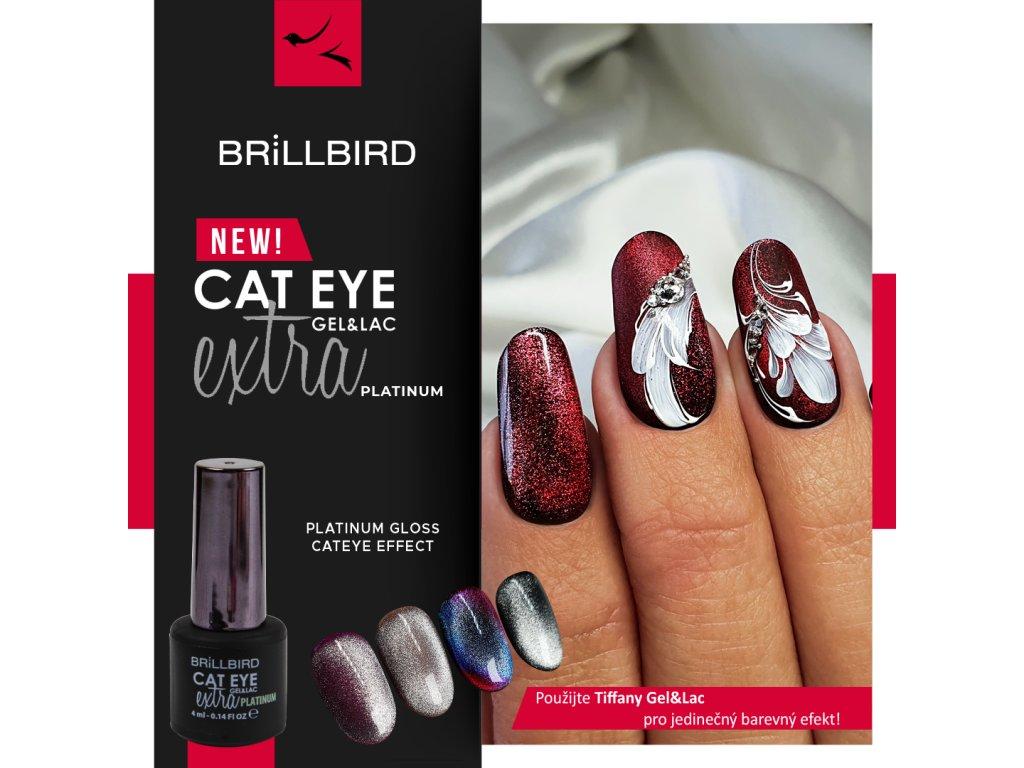 Cat Eye Gel Lac 4ml Platinum Brillbird Czech