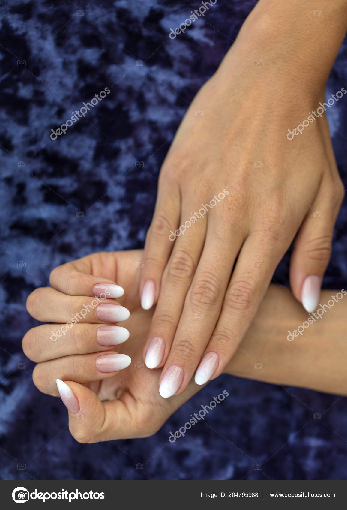 Pictures Ombre Nails Beautiful Woman Nails Beautiful French Manicure Ombre Peach White Stock Photo C Photosergii Gmail Com 204795988