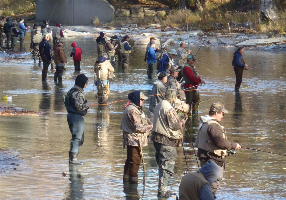 Where To Catch Steelhead Trout Without The Crowds In Pa Pittsburgh Post Gazette