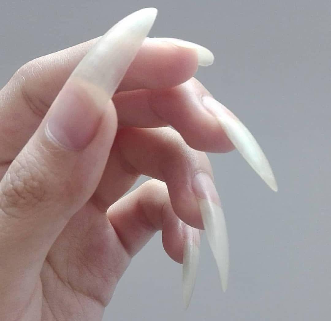 Pin On Sexy Long Nails